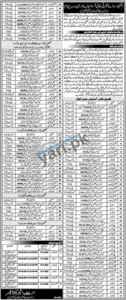District Education Authority Jobs in Faisalabad